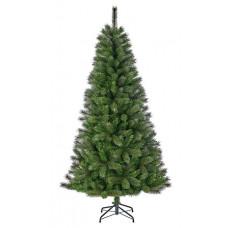 Сосна Medford BlackBoxTrees 1,20 м зелена